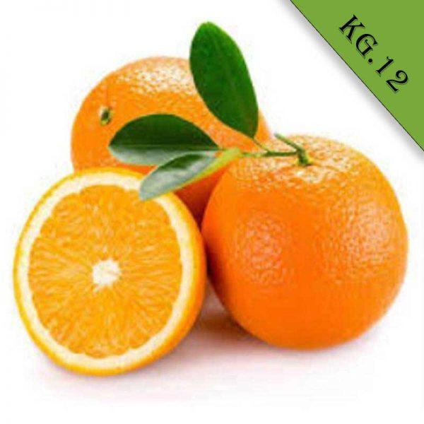 Arance vaniglia biologiche kg 12