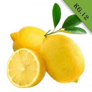 Limoni biologici kg 12