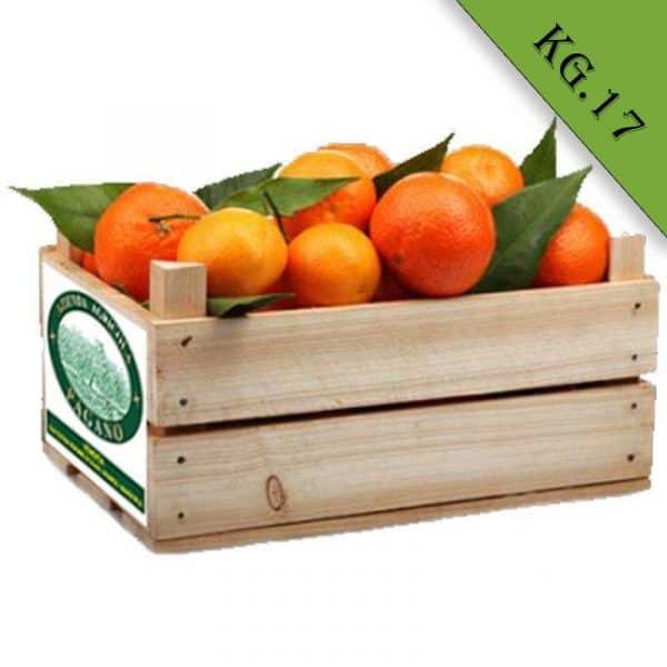 arance biologiche di ribera