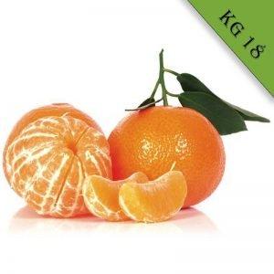 Mandarino tardivo biologico kg 18