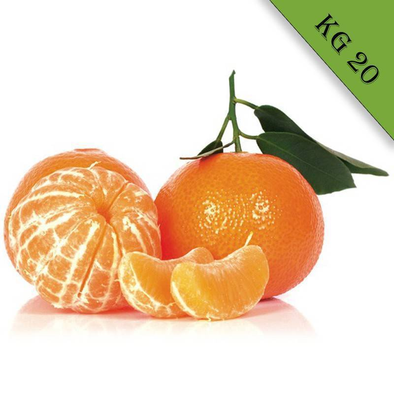 Mandarino tardivo biologico kg 20