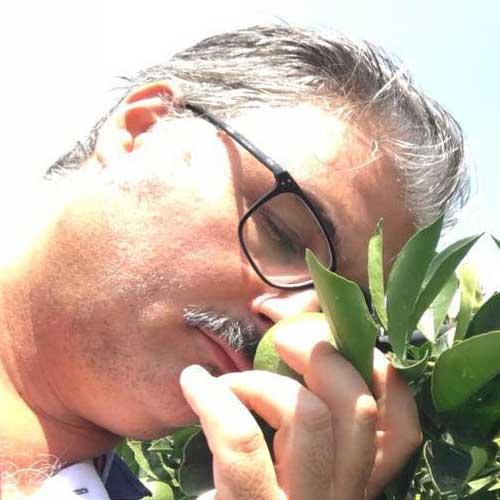 Arance Siciliane coltivate  dall'Azienda Agricola Pagano da ben 3 generazioni